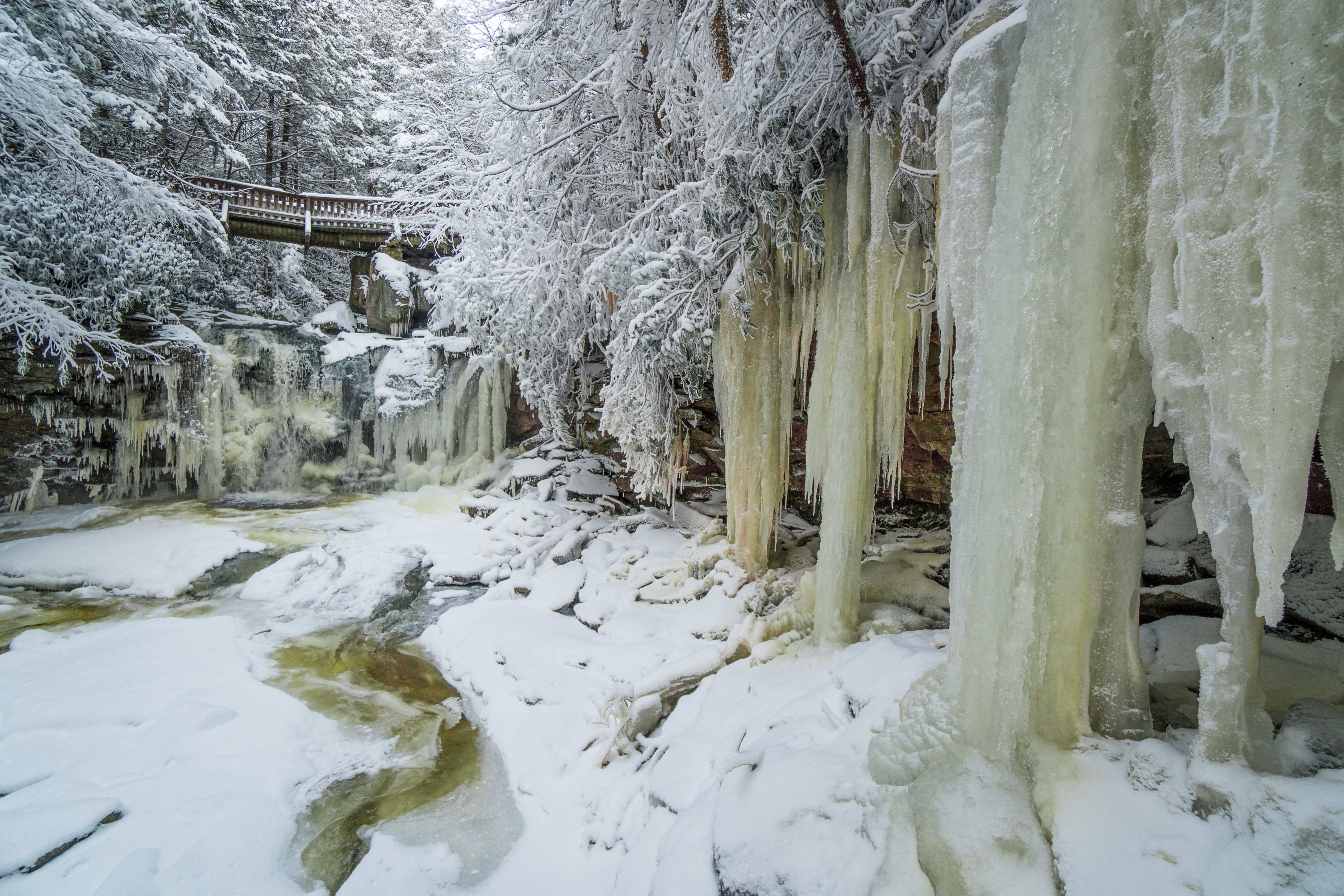 Elakala Falls frozen in Blackwater Falls State Park, West Virginia.